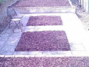 Landscaping Lewisham